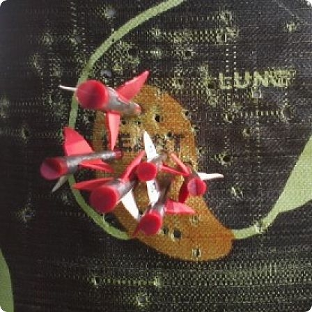 30-40-50 yards crossbow
